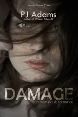 Damage (A New Adult romance) (new adult, romance, billionaire, wealthy, love triangle, contemporary, steamy romance, death, loss, grief, coming of age, family life, love, college)